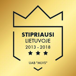 Stipriausi Lietuvoje 2013-2018